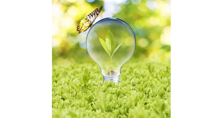 Iluminación sostenible, esencial para ahorrar energía